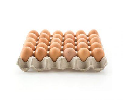 Watson Key Trays  Eggs 12X30 Large